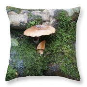 Mushroom In Moss Throw Pillow