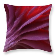 Mushroom Marcelleina Sp Detail Throw Pillow