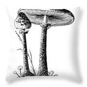 Mushroom: Parasol Agaric Throw Pillow