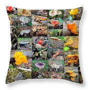 Mushroom Planet - Montgomery County Pa Throw Pillow
