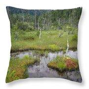 Muskeg Bog With Ponds, Mitkof Island Throw Pillow