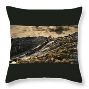 Mussels Sunset Throw Pillow