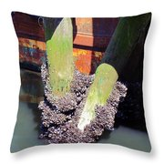 Jersey Shore Mussels - Point Pleasant Throw Pillow