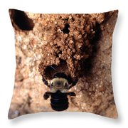 Mustached Mud Bee Throw Pillow