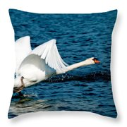 Mute Swan Gaining Momentum Throw Pillow