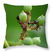 Mutualistic Throw Pillow
