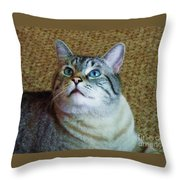 My Beautiful Blue Eyed Tiger Boy Throw Pillow