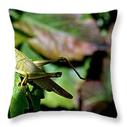 My Best Side Throw Pillow