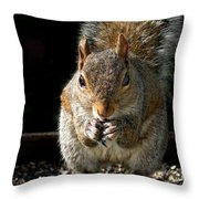 My Bird Feeder Throw Pillow
