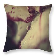 My Blood And Tears Throw Pillow