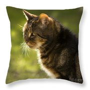 My Cat Throw Pillow