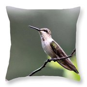 My Colors Are Coming Throw Pillow