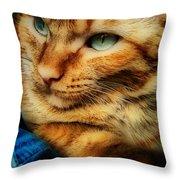 My Favorite Feline Throw Pillow