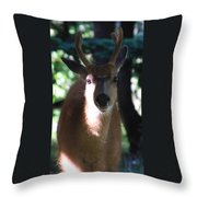 My Friend Throw Pillow