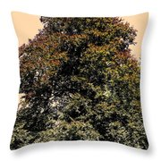 My Friend The Tree Throw Pillow