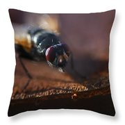 My My My Little Fly Throw Pillow