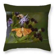 My National Geographic Moment Throw Pillow