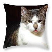 My Opinion Of Your Opinion Throw Pillow