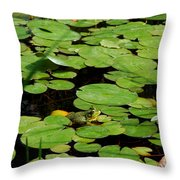 My Pad Or Yours Throw Pillow