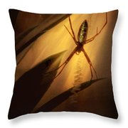 My Parlour Throw Pillow by Amy Tyler