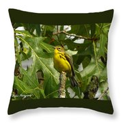 My Pretty Yellow Belly Throw Pillow