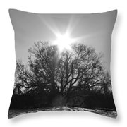 My Shadowed Roots Throw Pillow