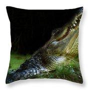 My Swamp Throw Pillow