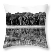 Myakka River Wilderness Throw Pillow