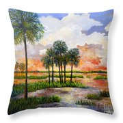 Myakka Sunset Throw Pillow