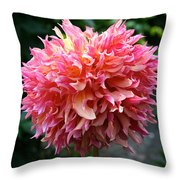 Myrtle's Folly Full Bloom Throw Pillow