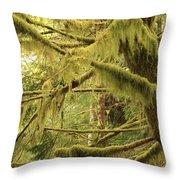 Mysterious Moss Throw Pillow