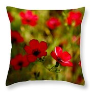 Mysterious Red Zone Throw Pillow