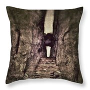 Mysterious Stairway Into A Canyon Throw Pillow