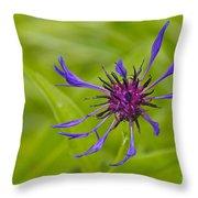 Mystery Wildflower 1 Throw Pillow