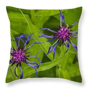 Mystery Wildflower 2 Throw Pillow by Sean Griffin