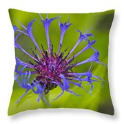 Mystery Wildflower 3 Throw Pillow by Sean Griffin