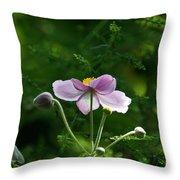 Mystical Moment Throw Pillow
