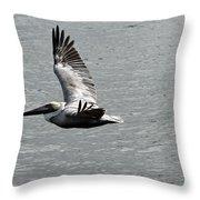 Naples Florida Pelican On The Prowl Throw Pillow