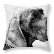 Napoleon Mischief Dog Portrait  Throw Pillow