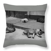Napping Friends In Valparaiso Throw Pillow by Camilla Brattemark