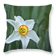 Narcissus In The Rain Throw Pillow