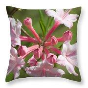 Native Azalea Throw Pillow