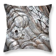 Natural Abstract 11 Throw Pillow