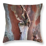 Natural Abstract 19 Throw Pillow