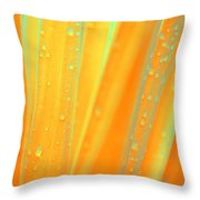 Natural Abstract 22 Throw Pillow