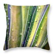 Natural Abstract 23 Throw Pillow
