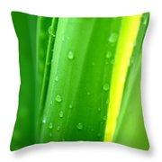 Natural Abstract 24 Throw Pillow