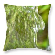 Natural Abstract 34 Throw Pillow
