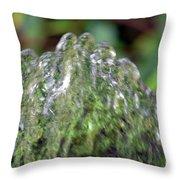 Natural Abstract 35 Throw Pillow
