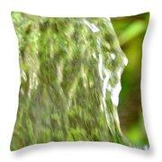 Natural Abstract 36 Throw Pillow
